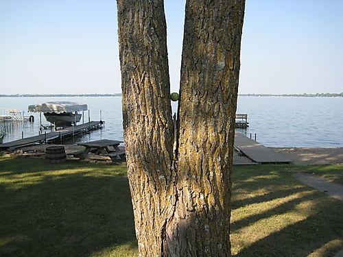 Lake 118