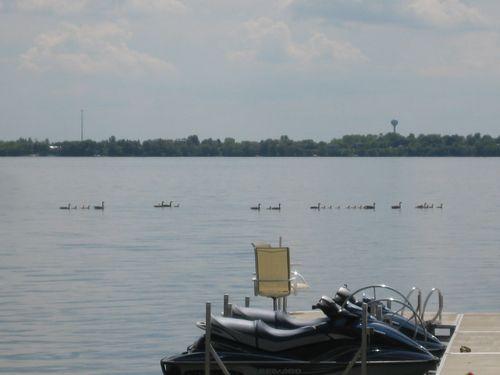 Lake - may 079