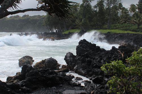 Hawaii 460
