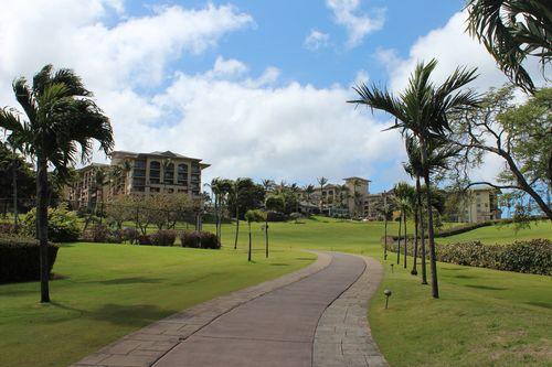 Hawaii 382
