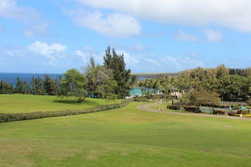 Hawaii 388