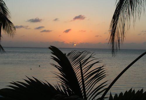 Cayman 270