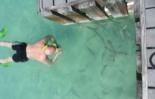 Cayman 033
